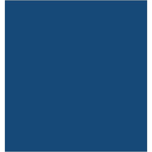 Trine University LOGO_185427