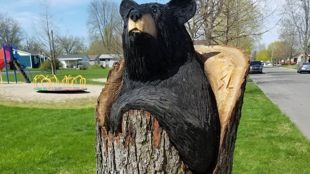 Decatur trees being carved into animal sculptures