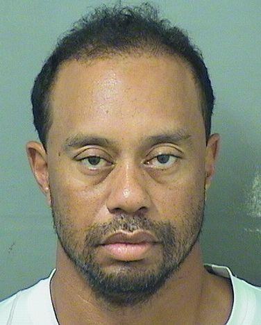 Tiger Woods mugshot_262122