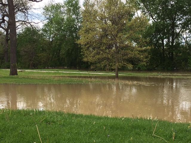Foster Park flood_257912