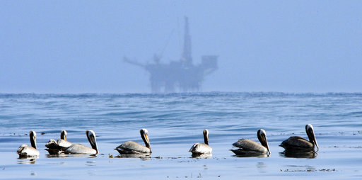 Trump Offshore Drilling_305445