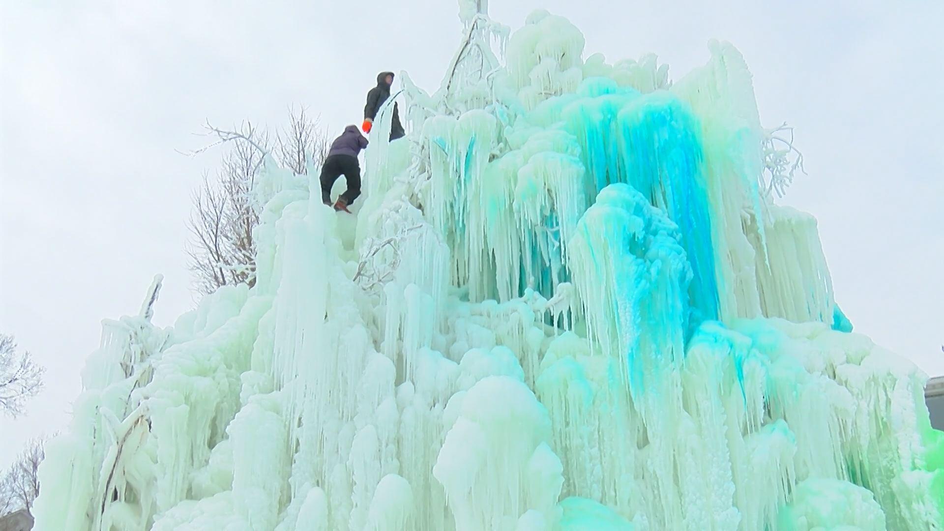 Veal's Ice Tree_306238