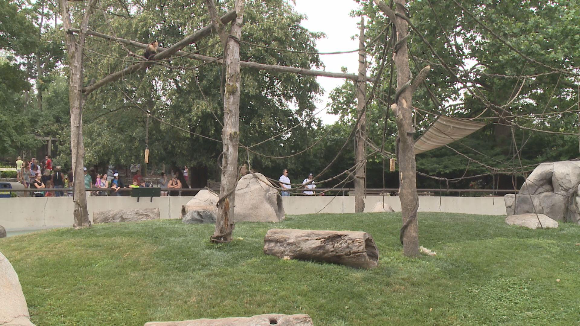 Monkey Island fort wayne children's zoo