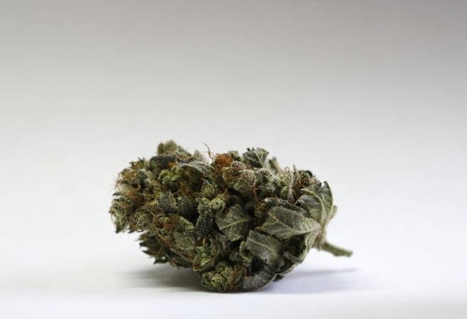 Marijuana file