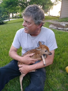 Fort Wayne fire deer fawn rescue