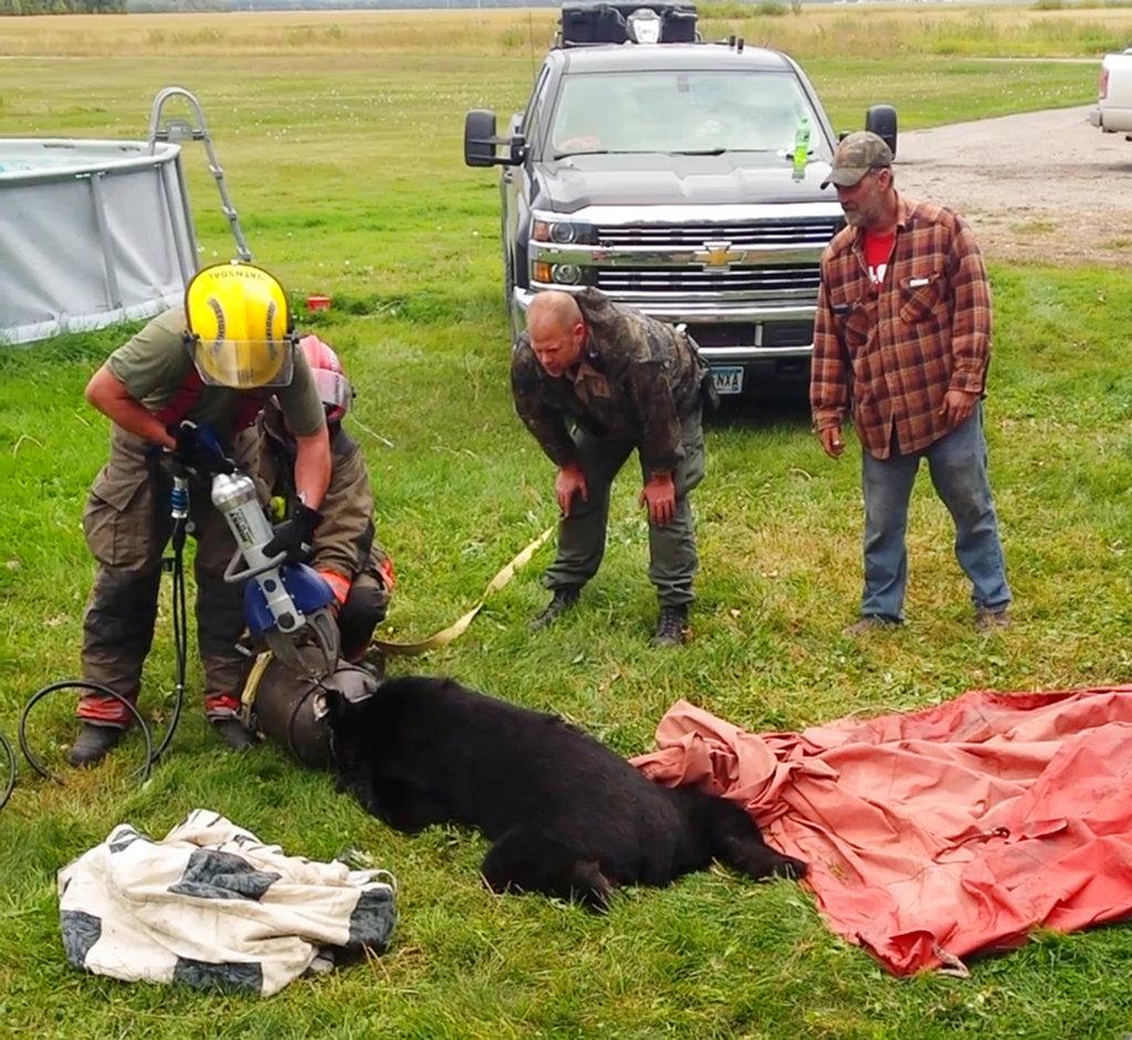 Bear Milk Can Rescue_1536785871972