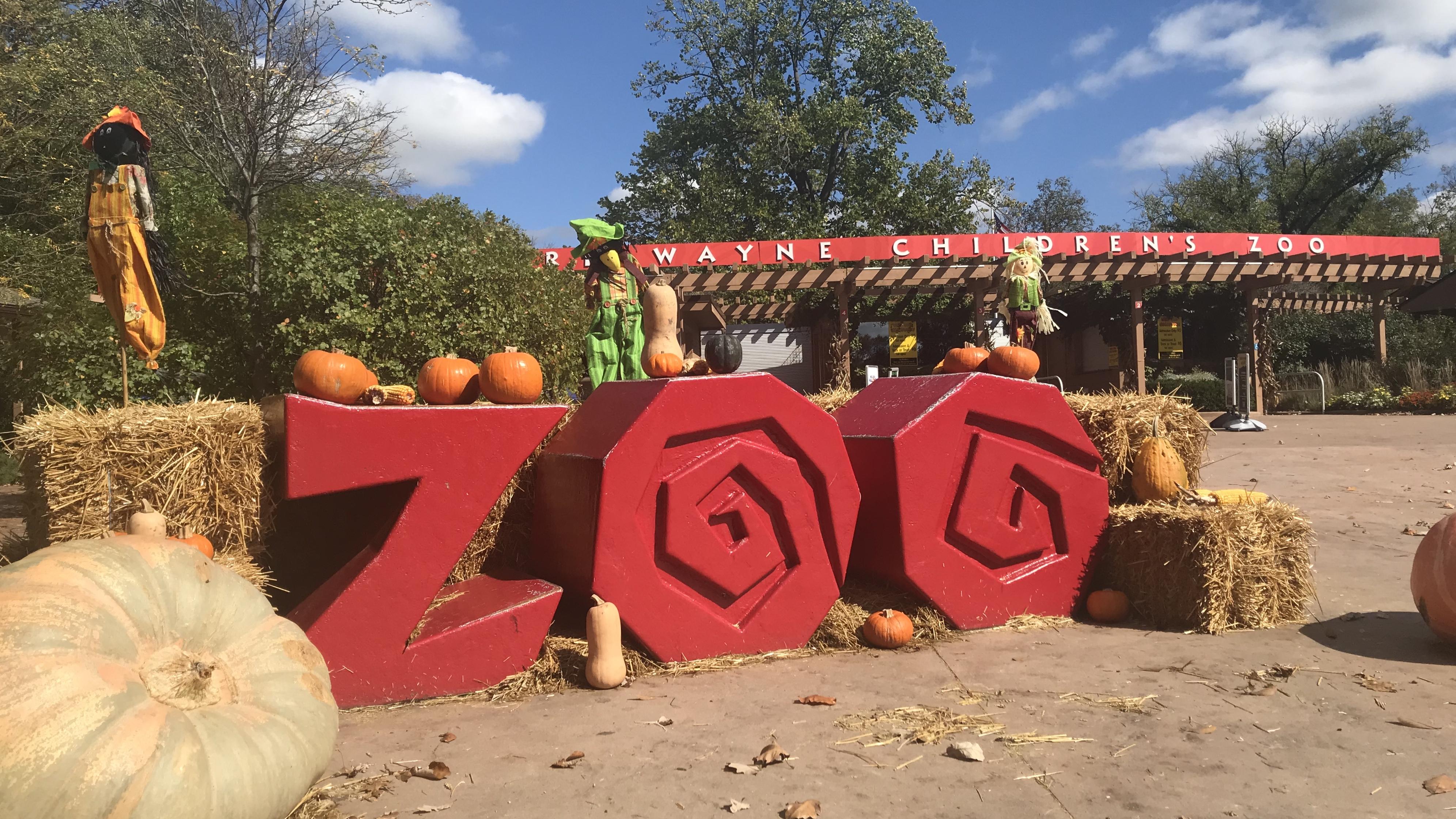 Fort Wayne Zoo Halloween 2020 Fort Wayne Children's Zoo cancels Wild Zoo Halloween   WANE 15