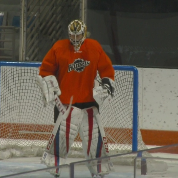 Zach_Fucale_headed_to_AHL_s_Chicago_Wolv_0_20181030024920