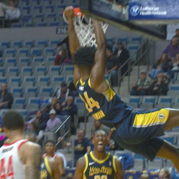 mad ants alize johnson