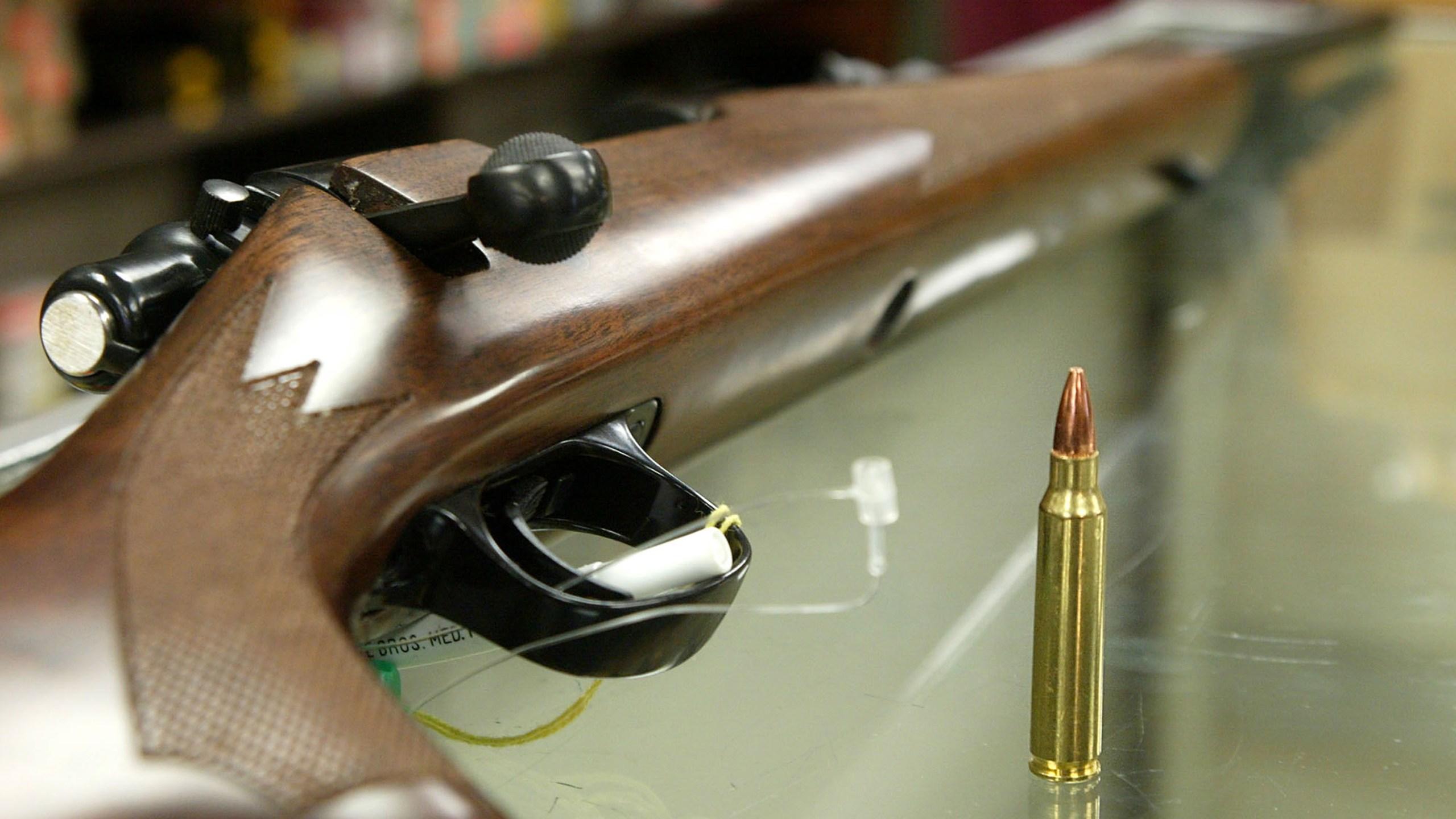 rifle bullet long gun_288781