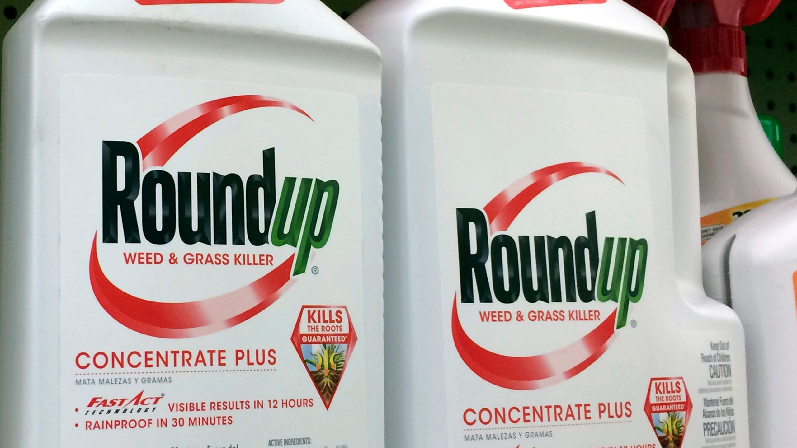 Roundup_Weed_Killer_Cancer_14698-159532.jpg69067959
