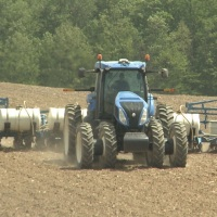 Corn farming file generic farm crops agriculture