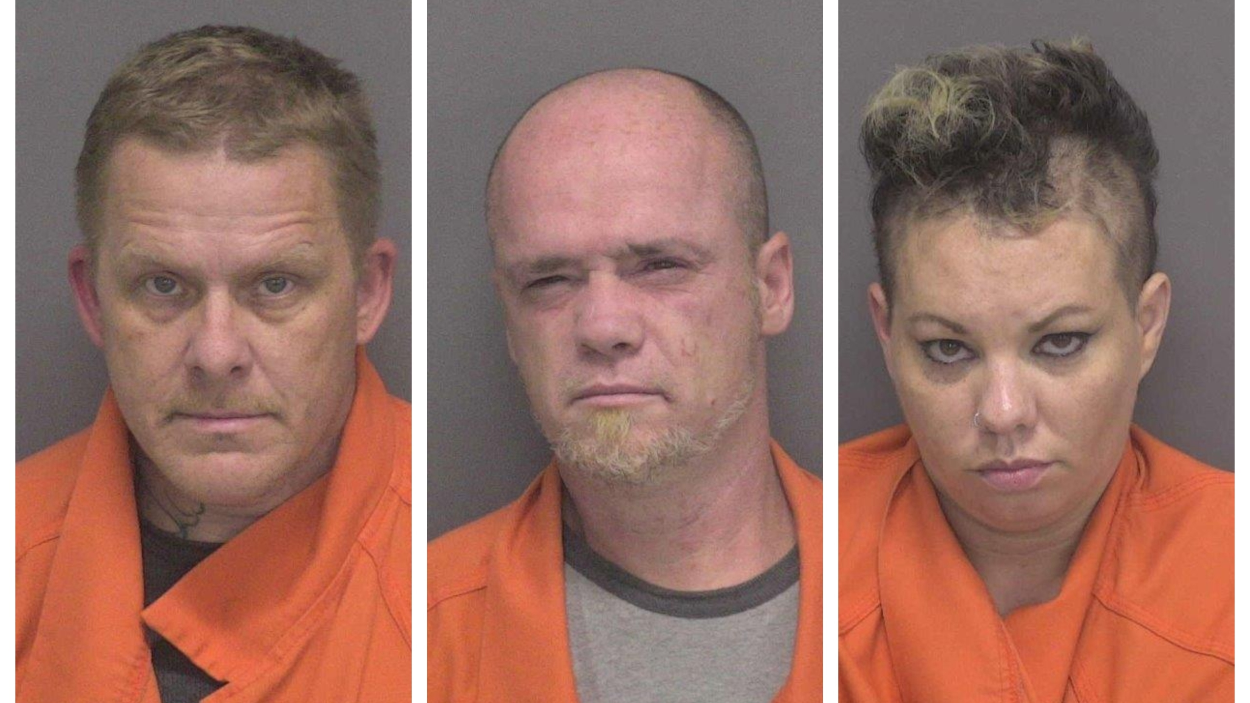 K9 traffic stop in Adams County ends with 3 arrests | WANE